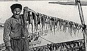 Fischer Porto Lagos