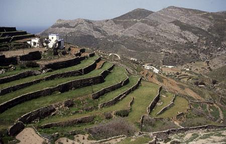 555-02-nsyros-terrasse450.jpg