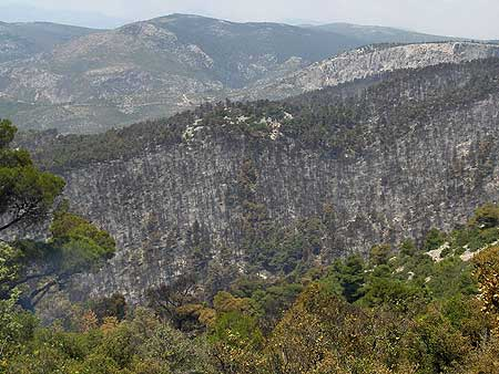 کوه پارنیتا