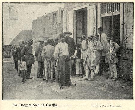 Mittelmeer-Chryssa_450