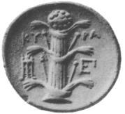 Silphium wikipedia