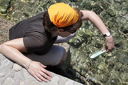 Hydra Molos Katharina