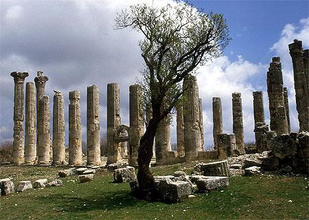 Zeus Olbios Tempel