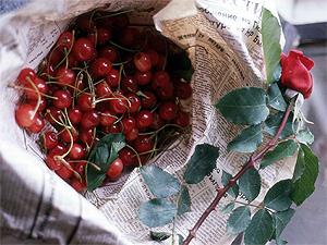 Rose und Kirschen