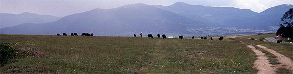 Rosental Bulgarien