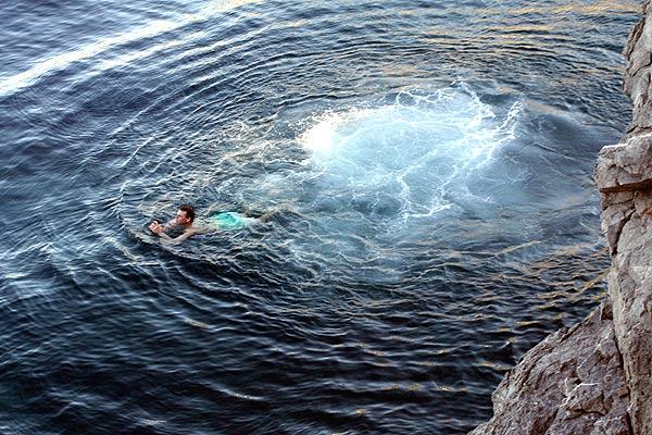 Hydra Winterschwimmer