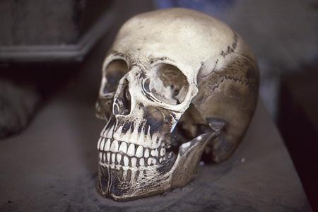 Staglieno Totenschädel